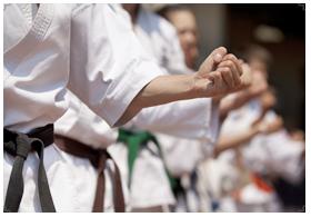 Karate_Teaser