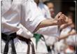 Karate_Teaser_110px
